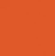 Orange Wheel Icon